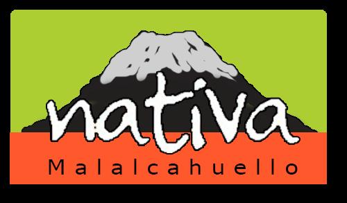 NativaMalalcahuello.cl